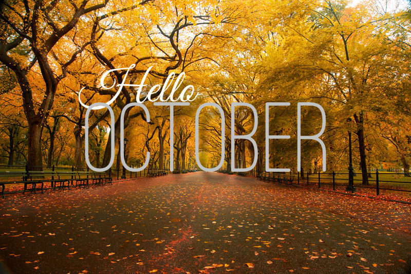 204860-Hello-October-Quote-With-Autumn-Trees